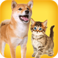 人狗猫交流器 V1.0 安卓版
