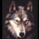黑狼ASP脚本解密工具