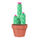 Kaktus(简约浏览器) V1.0 Mac版