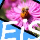 EasyImageSizer(图片压缩工具) V2.1.5 绿色版
