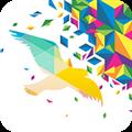 一个奇鸽旧版 V1.0 安卓版