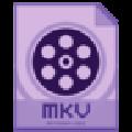 Dimo MKV Converter(MKV视频转换器) V4.2.0 官方版