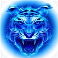 四虎影库 V2.4.1 安卓版