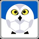 雪缘园足球 V2.4.0 安卓版