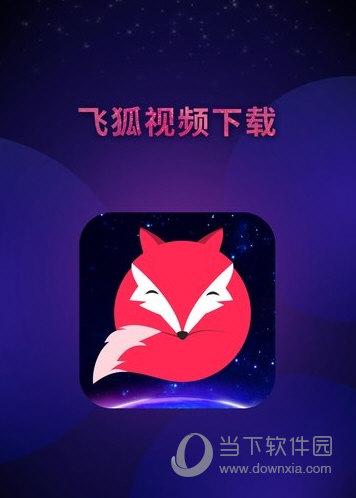 飞狐视频下载
