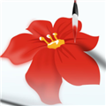 浅吟亭万能宝盒 V15.1 安卓版