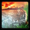 Photo Mixer(照片处理应用) V1.03 Mac版