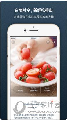 一米市集苹果版