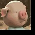 微信小猪跑步表情包 +7 最新免费版