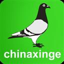 中国信鸽信息网 V20180913 安卓版