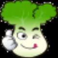 新白菜U盘启动制作工具 V9.1 官方版