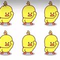 微信网红小黄鸭动态表情包 +8 绿色免费版