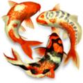 Koi Pond 3D(Mac动态壁纸) V1.3.1 Mac版