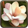 鲜花之园纸牌 V2.0 Mac