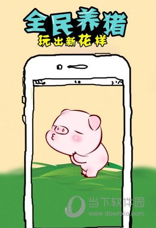 全民养猪游戏