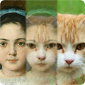 Zooface(奇幻变脸秀手机版) V1.3.6 安卓版