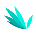 指尖文学 V3.0.4 安卓版