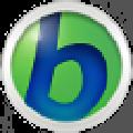 BabyIon(多语言翻译程序) V0.0.29 官方版