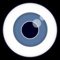 We See(趣味浏览器) V1.0 绿色免费版
