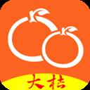大揭阳 V1.3 iPhone版