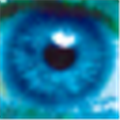 网管家计算机管理系统 V16.8 局域网版