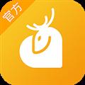 小鹿情感 V2.5.5 安卓版