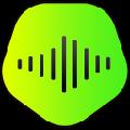 KeepVid Music(在线音频下载软件) V8.3.0.2 破解版