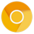 Google Chrome Canary(Chrome金丝雀) V77.0.3848.0 官方版