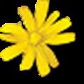Amiga Forever(Amiga模拟器) V8.0.5.0 破解版