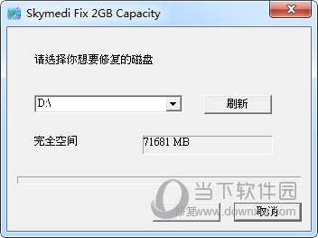 Skymedi Fix 2GB Capacity
