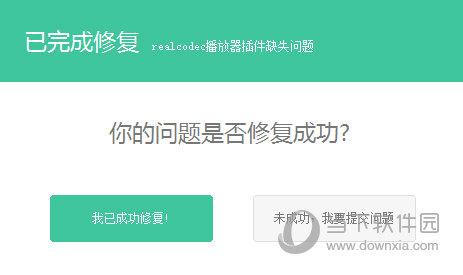 realcodec播放器插件