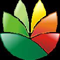 EximiousSoft Logo Designer(Logo设计工具) V3.90 官方版