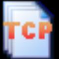 TcpLogView(TCP日志查看助手) V1.31 绿色版
