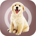 人狗沟通交流器 V1.0.7 免费PC版
