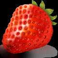 草莓文件加密器 V2.0 绿色免费版