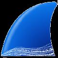 Wireshark V2.6.2 绿色汉化版
