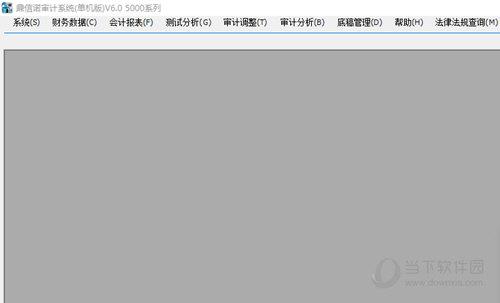 鼎信诺审计软件5000