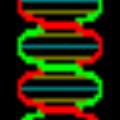 Gene Runner