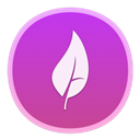Diet Mongo(开发辅助) V1.0 Mac版
