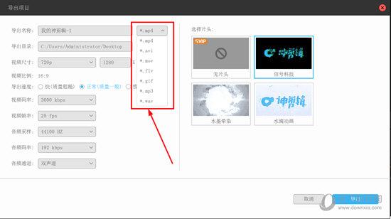 可以在红框标注内中找到可以转换输出的格式