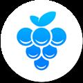Grape(团队沟通工具) V2.16.5 Mac版