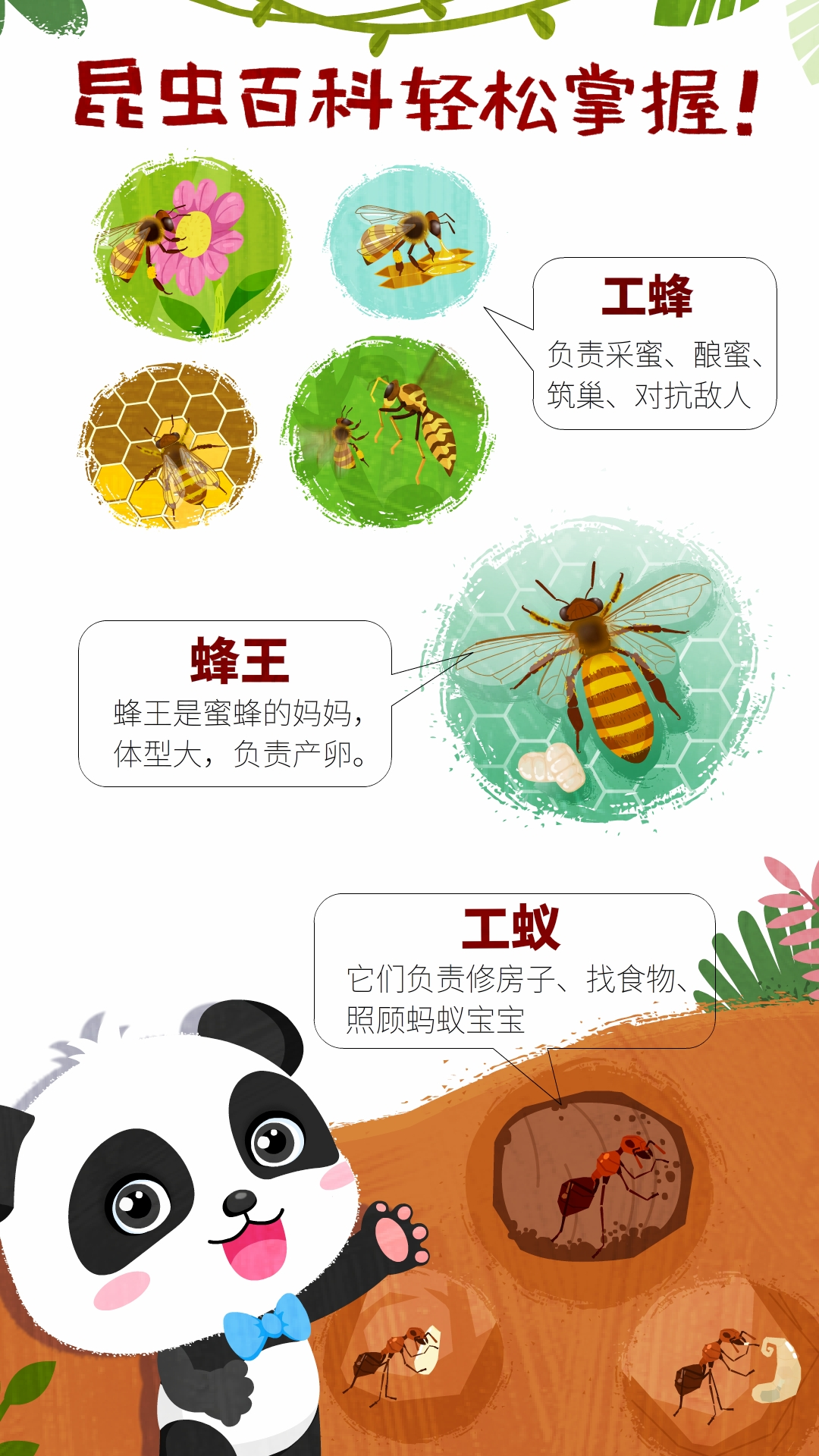 奇妙昆虫世界 V9.41.10.00 安卓版截图1