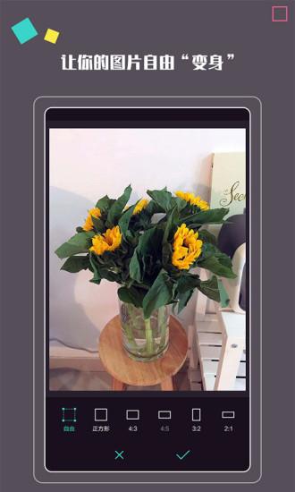 拍照大咖 V1.0.4 安卓版截图1