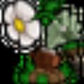 植物大战僵尸年度版修改器 V1.2 简体中文绿色免费版