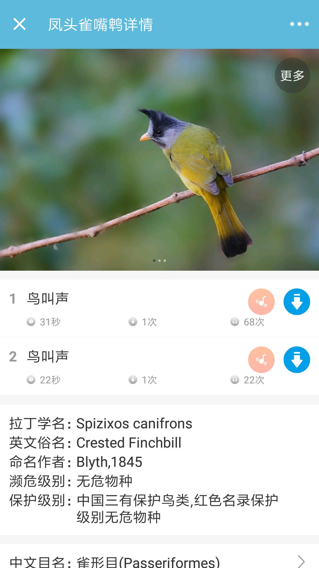 鸟叫声大全 V3.2.3 安卓版截图1