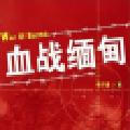 血战缅甸全能修改器 V2.0 绿色免费版
