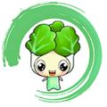 白菜挖 V4.2.0 苹果版