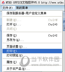 NTKO OFFICE文档控件