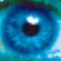 第三只眼监控软件