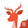 小鹿医生版 V3.15.0 安卓版